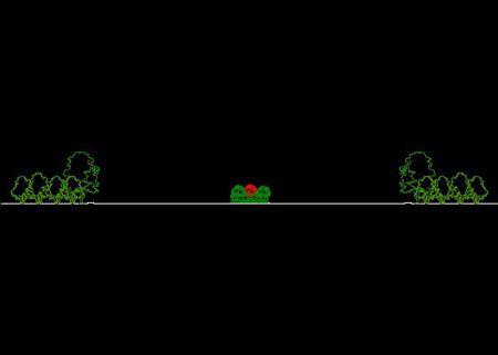 植物立面图例 - 副本
